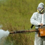 Bem-vindo, DDT! E rápido!