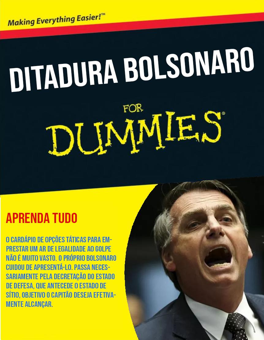 Bolsonaro for Dummies